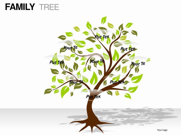 Powerpoint Family Tree Template Elegant Family Tree Powerpoint Presentation Templates