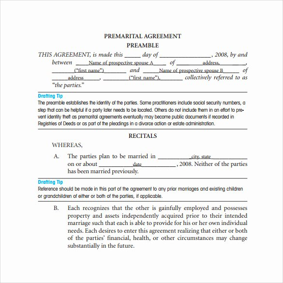 Prenuptial Agreement Sample Pdf Fresh Free 11 Prenuptial Agreement Samples In Pdf