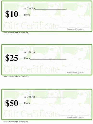 Printable Massage Gift Certificates Luxury Gift Certificate Massage Spa Printable Certificate