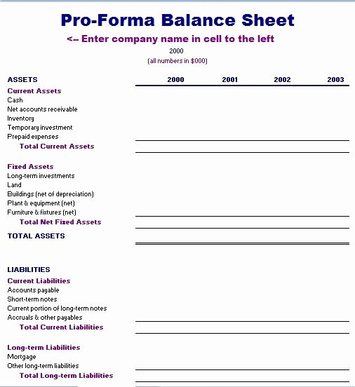 Pro forma Balance Sheet Template Elegant Proforma Balance Sheet Template