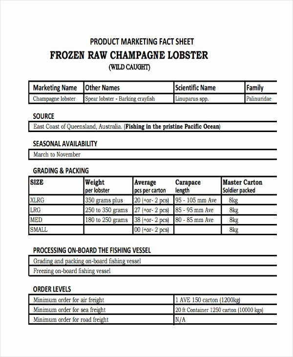 Product Data Sheet Template Unique 29 Fact Sheet formats