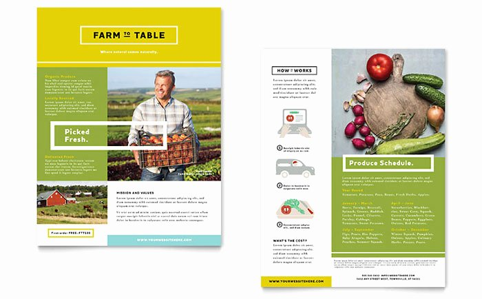 Product Sell Sheet Template Beautiful organic Food Datasheet Template Design