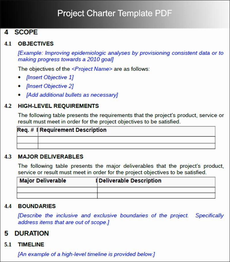 Project Charter Example Pdf New Provisioning Resume