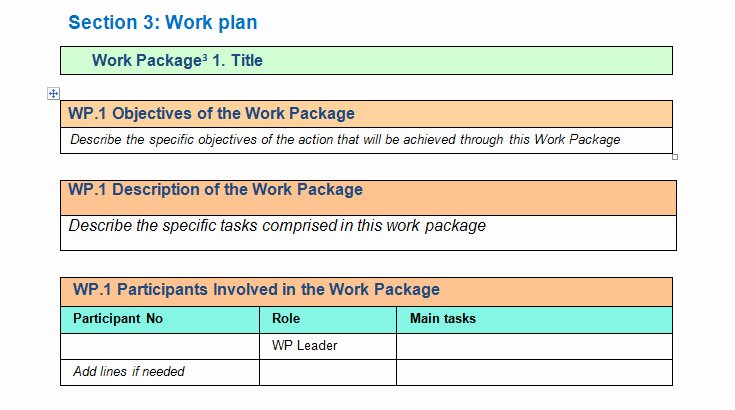 Project Execution Plan Template Luxury Work Package Description Template Download for Project