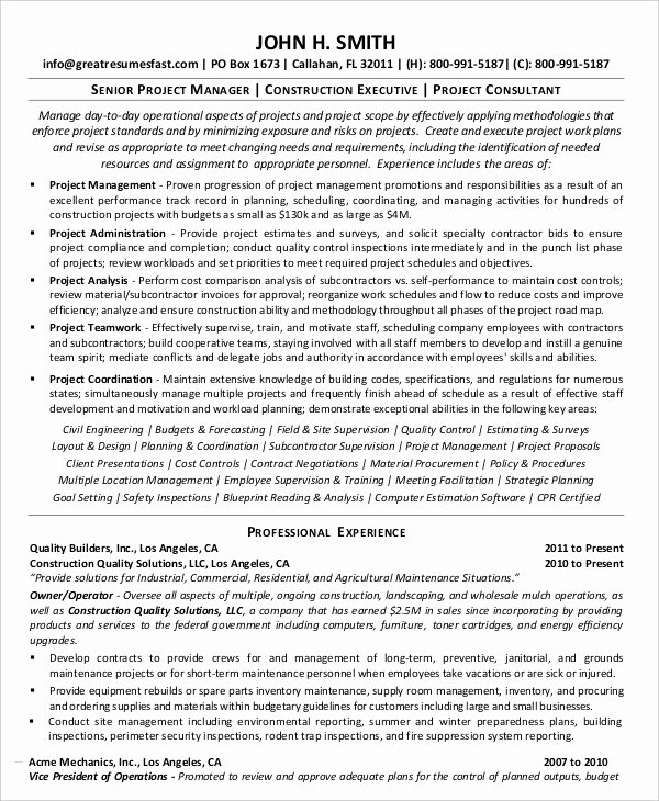Project Manager Resume Pdf Elegant Project Management Resume Example 10 Free Word Pdf Documents Download