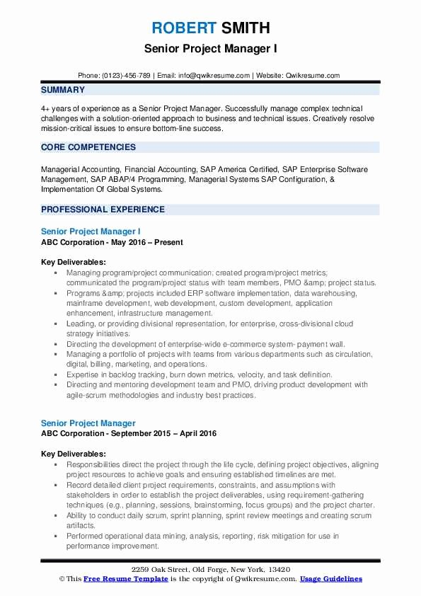 Project Manager Resume Pdf New Senior Project Manager Resume Samples