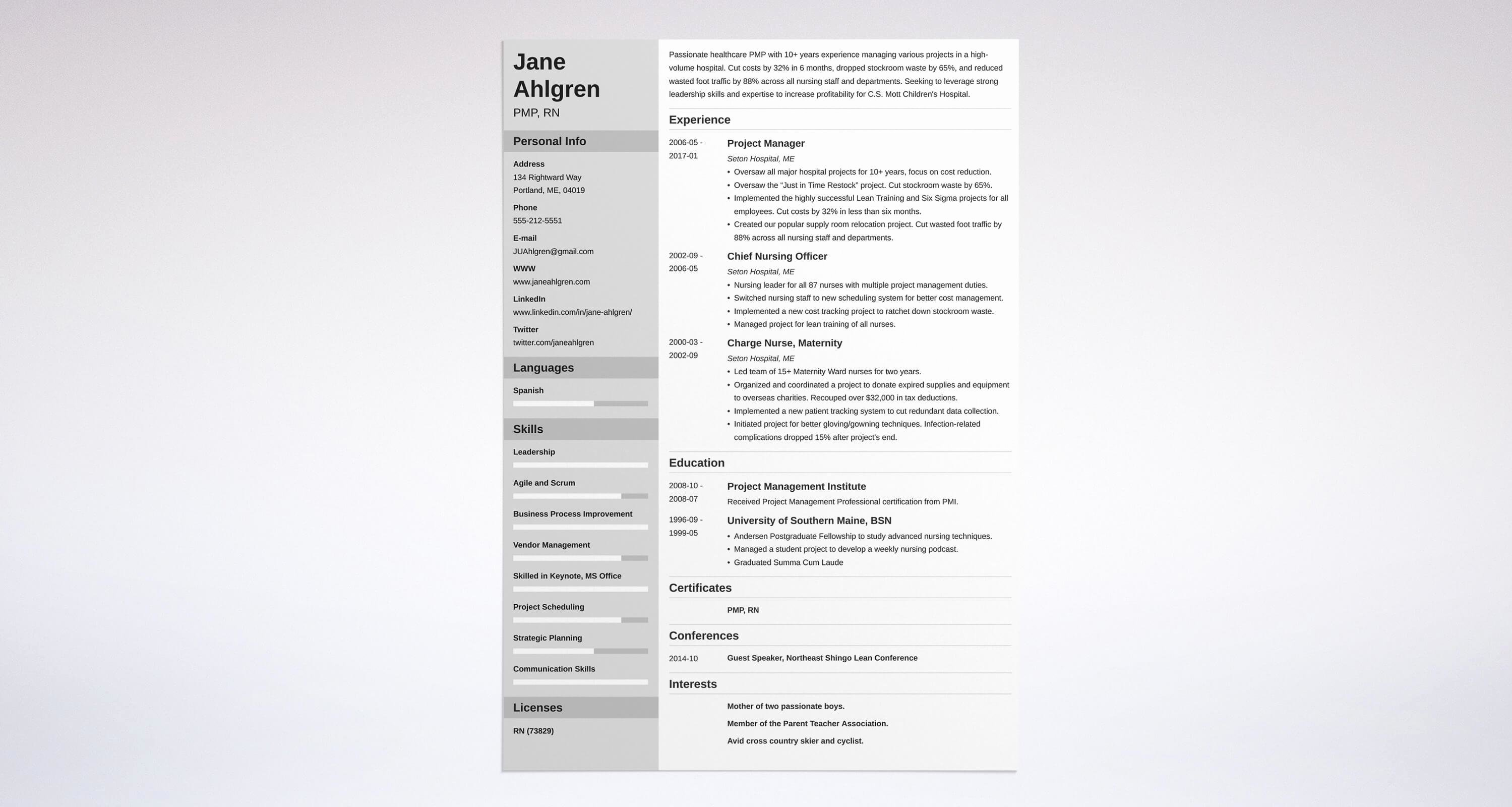Project Manager Resume Sample Doc Inspirational Project Manager Resume Samples