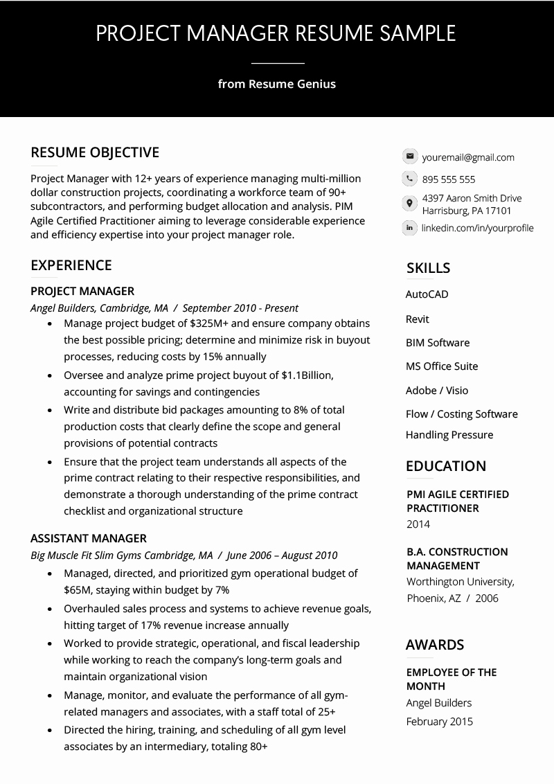 Project Manager Resume Sample Doc Lovely Project Manager Resume Sample & Writing Guide