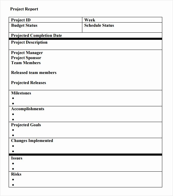 Project Report Template Word Beautiful Free 14 Sample Project Status Reports In Google Docs Ms Word Pages