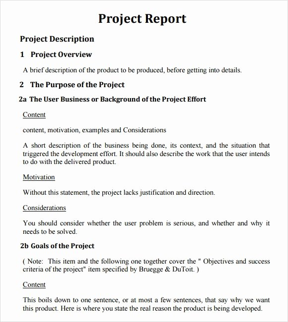 Project Report Template Word Inspirational 26 Project Report Templates Download Docs Word Pages