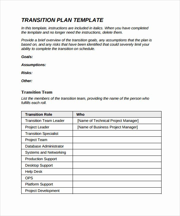 Project Transition Plan Template Excel Inspirational Free 9 Sample Transition Plans In Pdf Word
