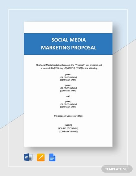 Public Relations Proposal Example Unique Public Relations Proposal Template Download 123 Marketing Templates In Microsoft Word Apple
