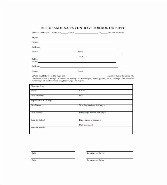 Puppy Bill Of Sale Elegant Dog Bill Of Sale Template – 8 Free Word Excel Pdf format Download
