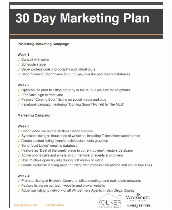 Real Estate Marketing Plan Pdf Unique 11 Basic Real Estate Marketing Plan Templates Pdf Word
