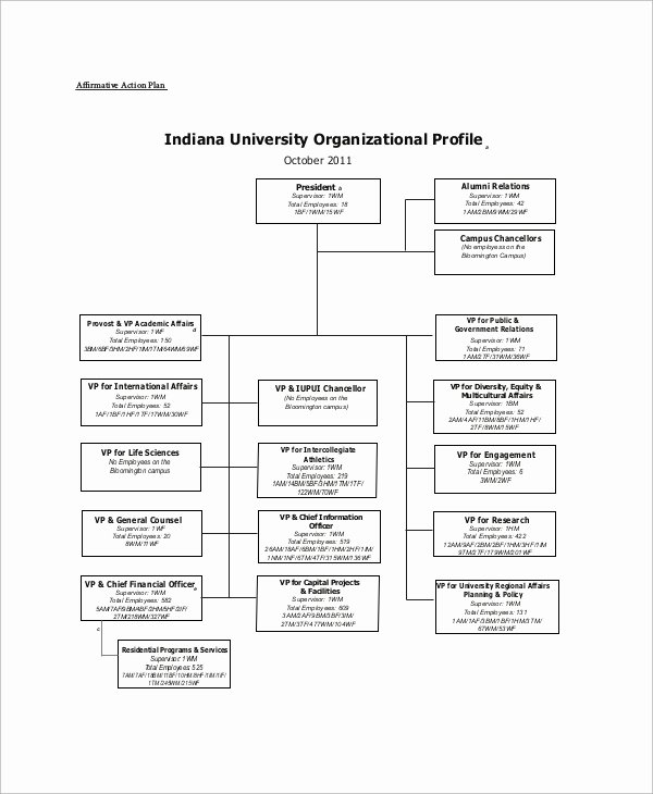 Sample Affirmative Action Plan New Sample Affirmative Action Plan 9 Examples In Word Pdf