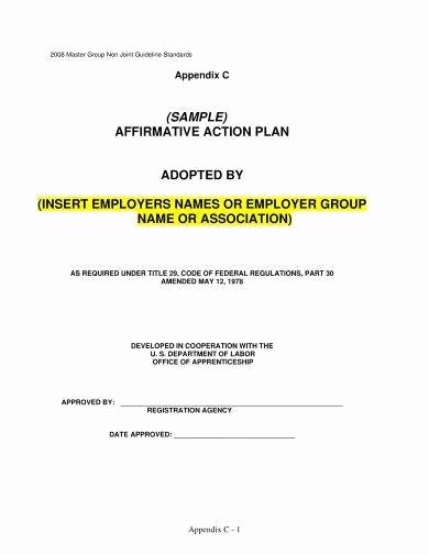 Sample Affirmative Action Plans Beautiful 10 Affirmative Action Plan Examples Word Pdf