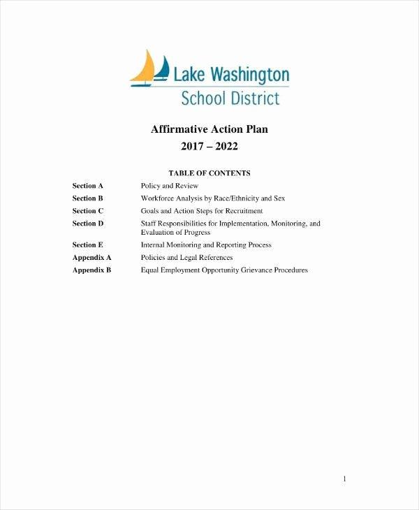Sample Affirmative Action Plans Elegant 8 Affirmative Action Plan Templates Pdf Word