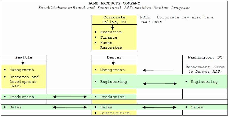 Sample Affirmative Action Plans Unique Functional Affirmative Action Plan Process Update