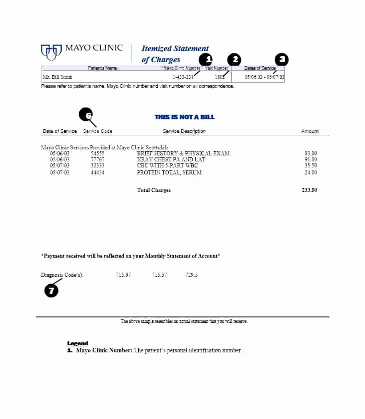 Sample attorney Billing Statement Best Of 40 Billing Statement Templates [medical Legal Itemized More]