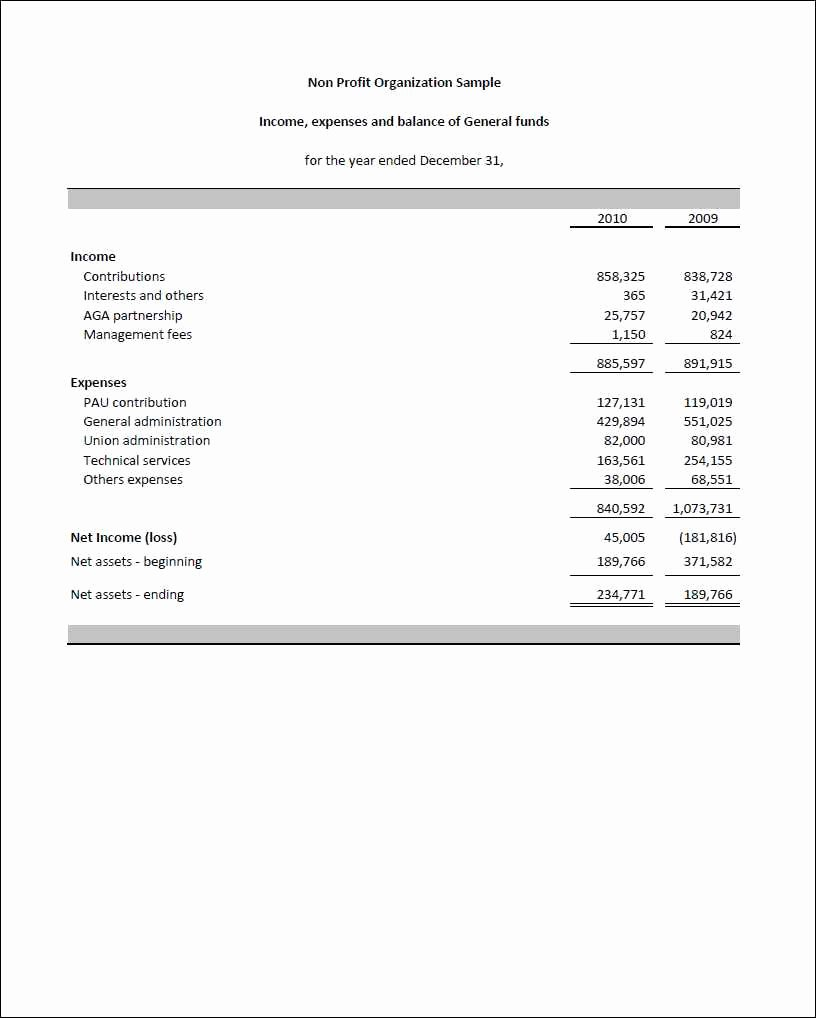 Sample Income Statement Excel Beautiful Monthly Financial Reports for Nonprofits and Non Profit In E Statement Excel