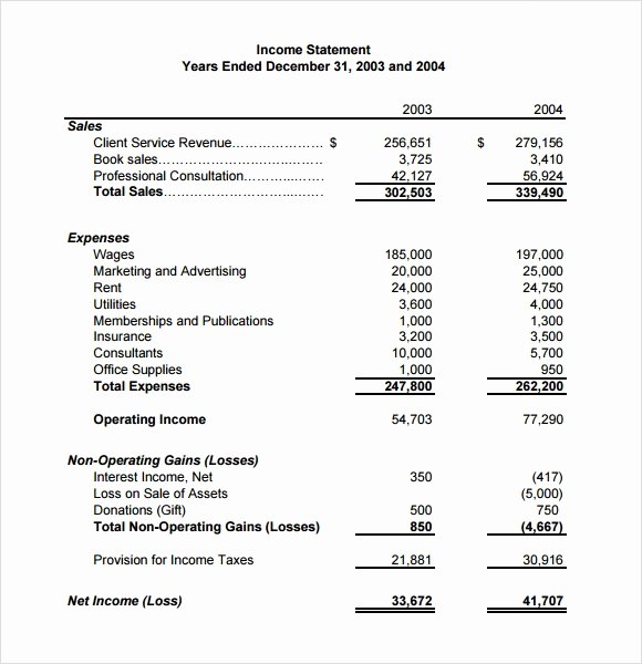 Sample Income Statement Excel Beautiful Sample In E Statement 9 Documents In Pdf Word