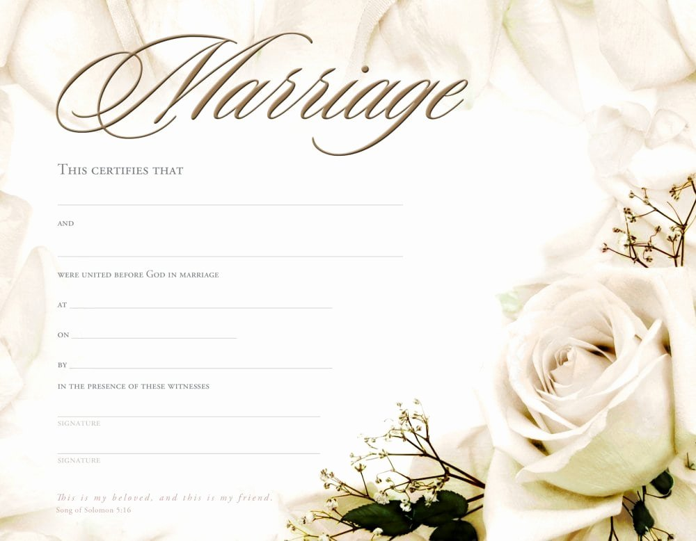 Sample Of Marriage Certificates Elegant Marriage Certificate Template formats Examples In Word Excel