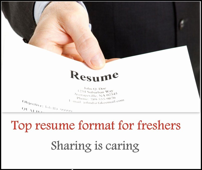 Sample Resume for Freshers Fresh top 5 Resume format for Freshers Free Freshers 360