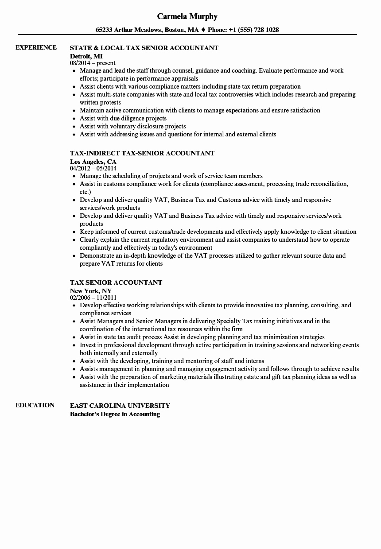 Senior Accountant Resume Sample Luxury Tax Senior Accountant Resume Samples