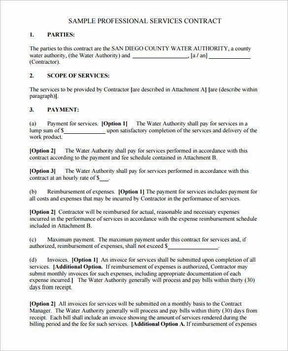 Service Agreement Template Doc Best Of 16 Service Contract Templates Word Pages Google Docs Pdf