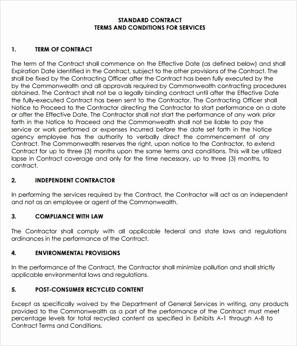 Service Contract Template Doc Unique Free 18 Service Agreement Templates In Google Docs Ms Word Pages