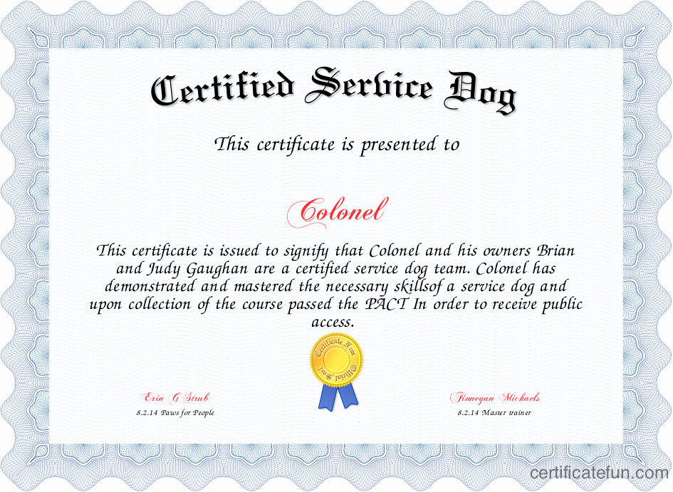 Service Dog Certificate Pdf Beautiful Certified Service Dog Certificate