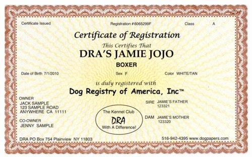 Service Dog Certificate Pdf Beautiful Register My Dog & Puppies