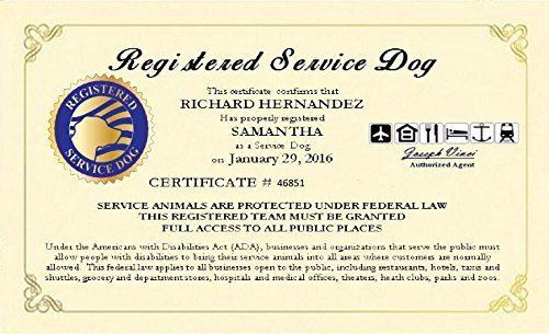 Service Dog Certificate Pdf Best Of Amazon Seller Profile Working Service Dog Llc