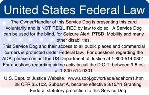 Service Dog Certificate Pdf Inspirational Ada & Federal Law Information Card