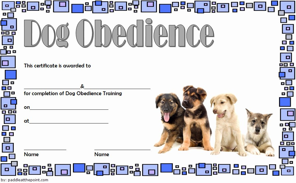 Service Dog Certificate Pdf Luxury Dog Training Certificate Template [10 Latest Designs Free]