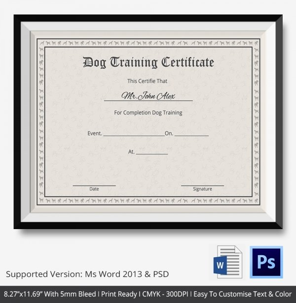 Service Dog Certificate Pdf Unique Training Certificate Template 21 Free Word Pdf Psd format Download