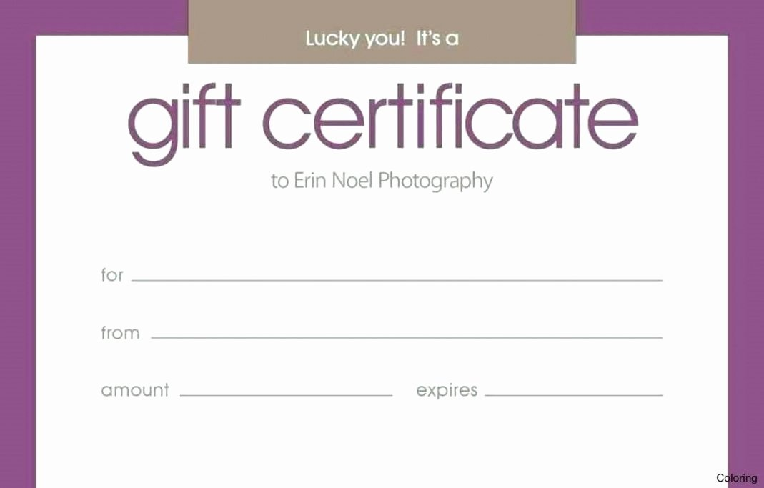 Silent Auction Certificate Template New Silent Auction Certificate Template