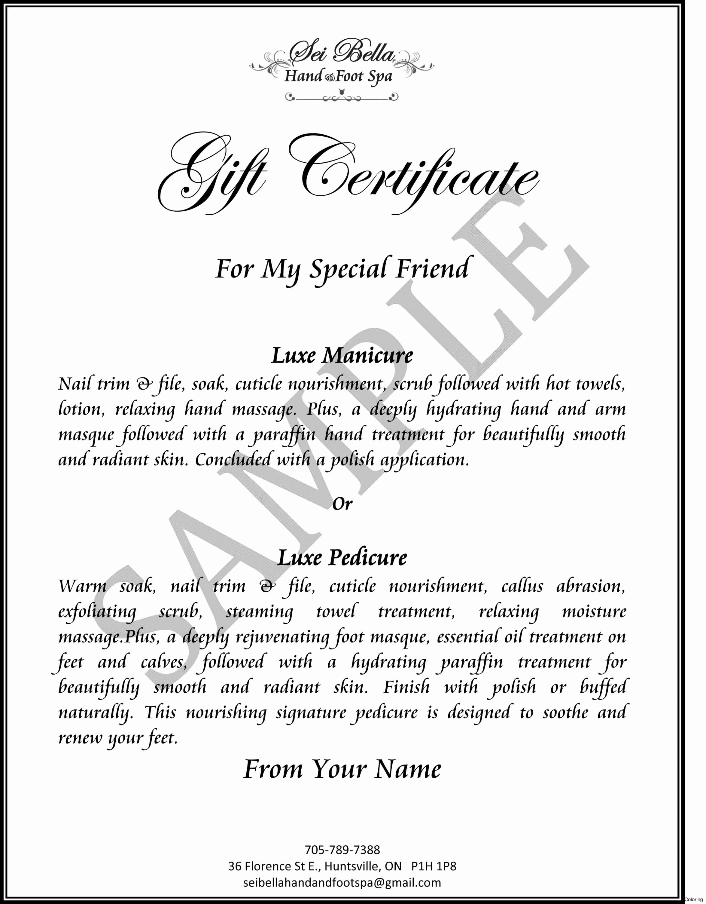 Silent Auction Certificate Template Unique Silent Auction Gift Certificate Template