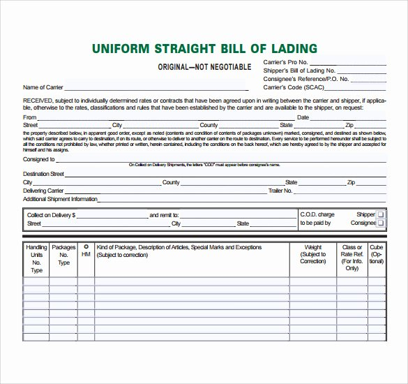 Simple Bill Of Lading Beautiful Bill Lading Template