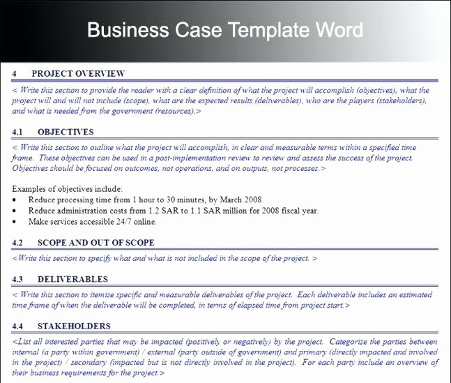 Simple Business Case Template Luxury Cost Justification Template