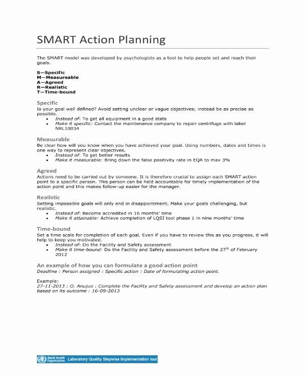 Smart Action Plans Template Unique 11 Smart Action Plan Templates Pdf Word