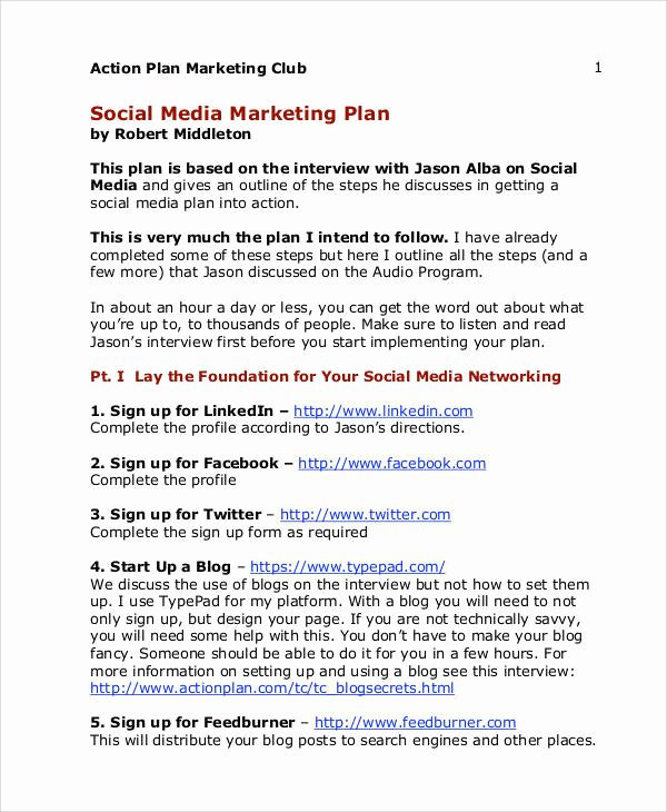 Social Media Marketing Proposal Pdf Beautiful 24 Marketing Plans In Pdf