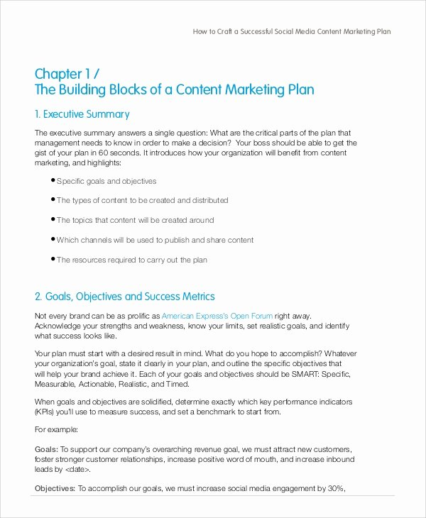 Social Media Marketing Proposal Pdf Best Of Sample social Media Marketing Plan 13 Examples In Pdf Word Docs