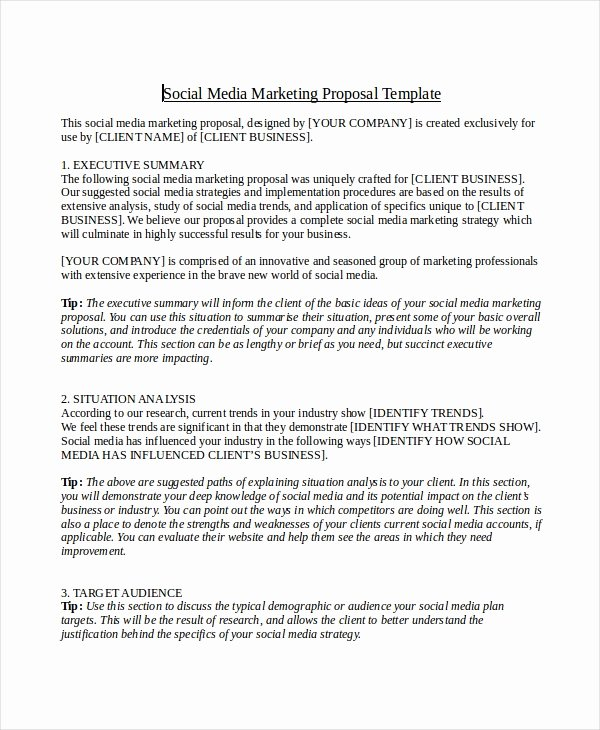 Social Media Proposal Pdf Beautiful Free 12 social Media Marketing Proposal Examples & Samples In Pdf Google Docs Pages