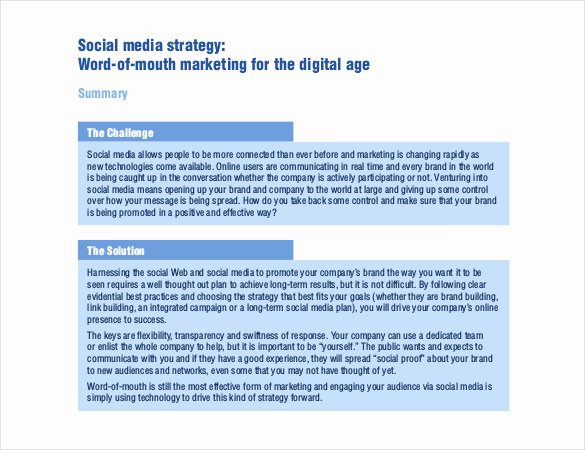Social Media Proposal Pdf Elegant social Media Strategy Template 14 Free Word Pdf Documents Download