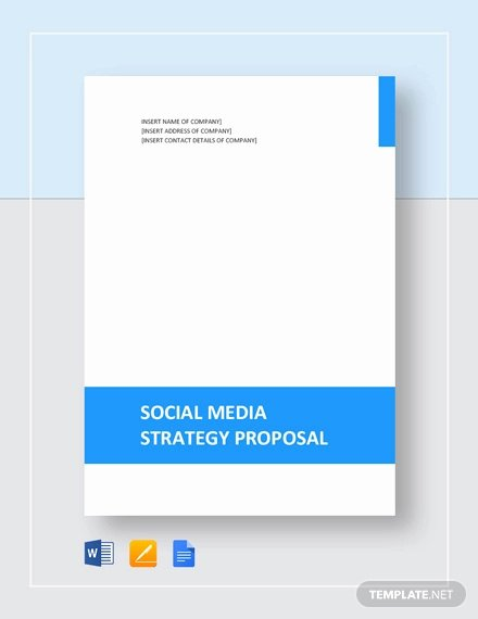 Social Media Proposal Pdf Unique social Media Proposal Templates 20 Free Word Pdf Documents Download