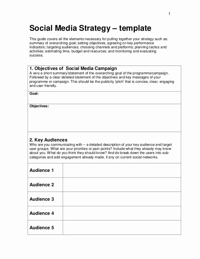 Social Media Strategy Template Pdf New 06c social Media Strategy Template