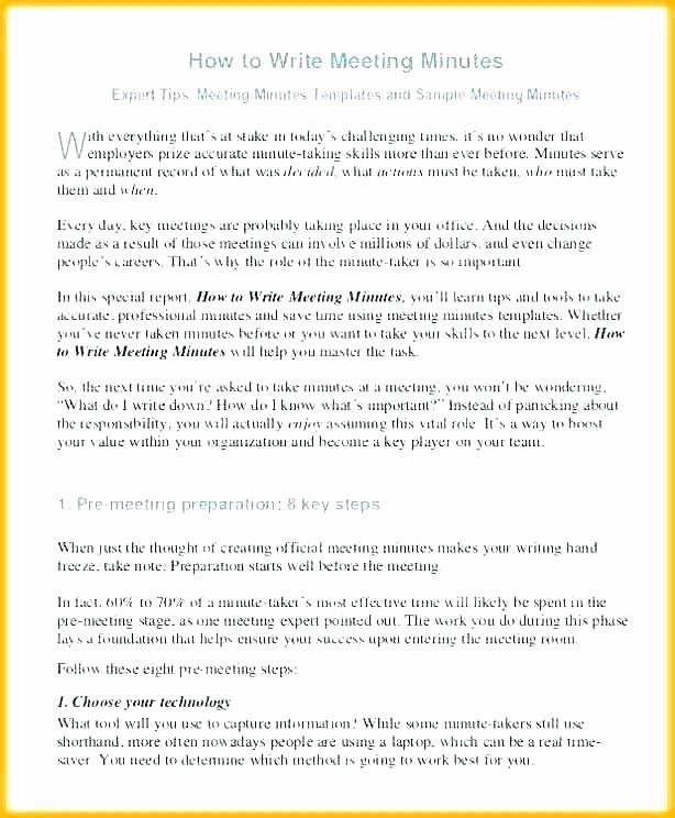 Sole Shareholder Meeting Minutes Sample Inspirational Corporate Meeting Minutes Template