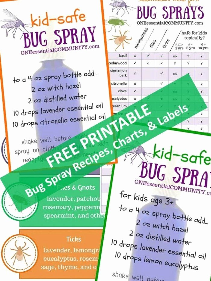 Spray Bottle Label Template Luxury Free Printable Bug Spray Recipe Charts and Labels