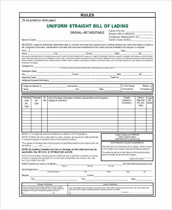 Standard Bill Of Lading Awesome Sample Bill Of Lading form 8 Examples In Word Pdf